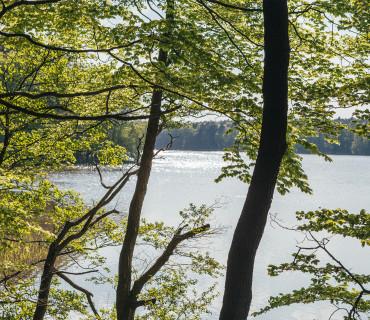 Autumn Awakening: Three Lake-Hopping Trips in Brandenburg and Berlin