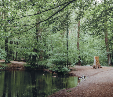 Interview with Livia Ritthaler about Walking Wild – the guide book for dog owners in Berlin