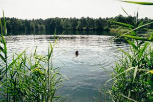 take Me To The Lake Tonsee 11