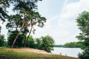 take Me To The Lakes Nordrhein Westfalenedition Koeln Duesseldorf Dortmund Essen Seen Guide Badeseen Duesseldorf Wolfssee 6