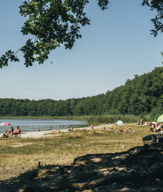 A Road Trip to Gorinsee – Forest Bathing Near Wandlitz