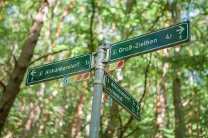 takemetothelakes Weshare Grumsiner Buchenwald 2