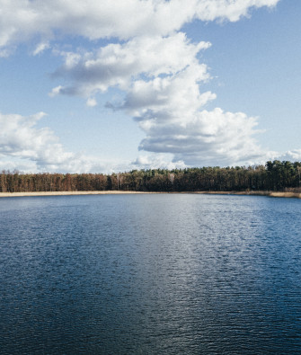 Towering Pines, Swaying Reeds and a Sandy Beach at Little Lotschesee in Wandlitz