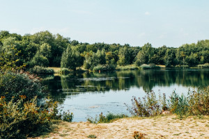 Waldsee Lauer Leipzig Süden Take Me to the Lakes